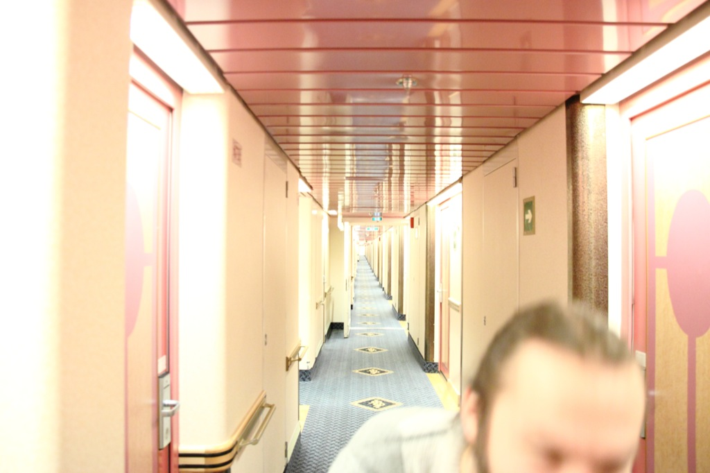 SKÄLVA exploring the inbetween spaces of Amorella_01